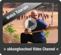 ukkungfuschool videos
